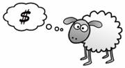 treasurer sheep dreams of money