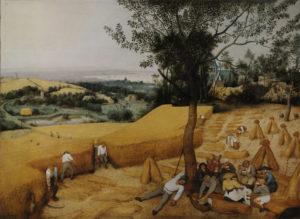 Pieter Bruegel the Elder The Harvesters